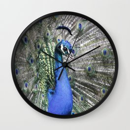 Great Peacock 215 A Wall Clock