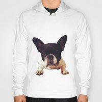 frenchie Hoodies featuring Frenchie by lori