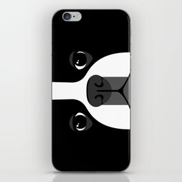 Boston Terrier Close Up iPhone Skin