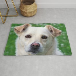Blond dog portrait Rug