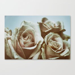 Fading Beauties Canvas Print
