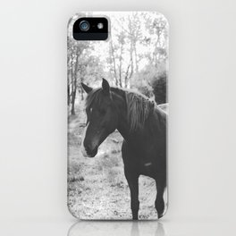 Horse VI _ Photography iPhone Case