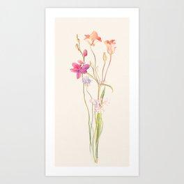 Floral watercolour Art Print