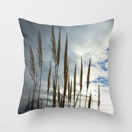 Coronado California Seagrass Throw Pillow