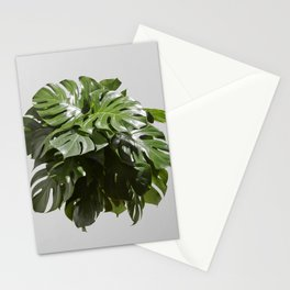 Tropical leaves monstera Stationery Cards