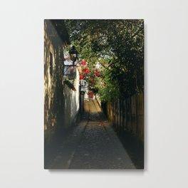 Secret Alley Metal Print