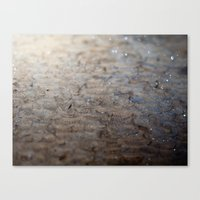 scales Canvas Prints featuring Scales by Moiz Merchant