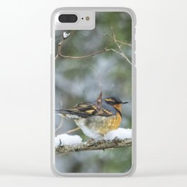 Male Varied Thrush, No. 2 Clear iPhone Case