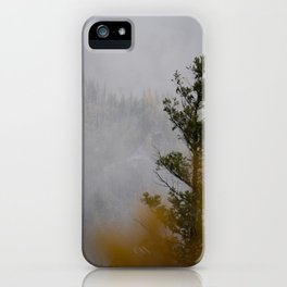 Myra Canyon Late Fall iPhone Case