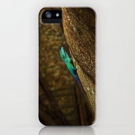 Turquoise Bermuda Lizard iPhone Case