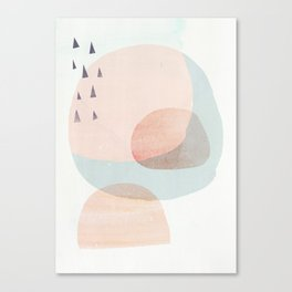 04 a4 society6 peach higher res Canvas Print