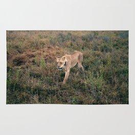 Lone Lion. Rug