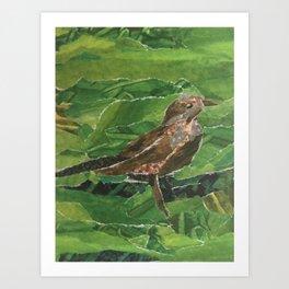Brown Bird in the Green Grass Art Print