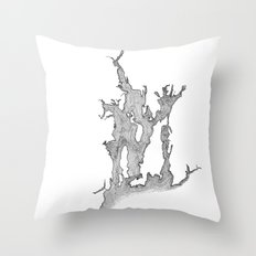 Narragansett Bay Throw Pillow