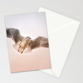 Seagull Floating Through Sunset Sky Stationery Cards