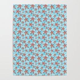 Star Spangled Sea Poster