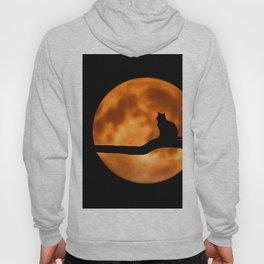 Moon cat Hoody