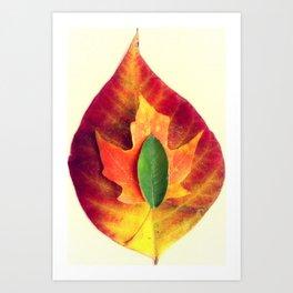 Stackable Leaves II Art Print