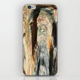 Granite iPhone Skin