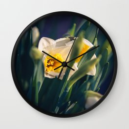 Daffodils from my floral photography collection (mural) Wall Clock