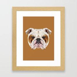 English Bulldog // Natural  Framed Art Print
