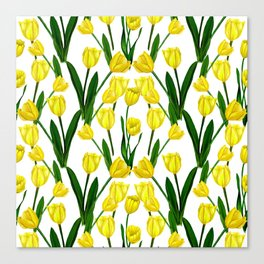 Tulip_Netherlands_Yellow Tulip drawing Canvas Print