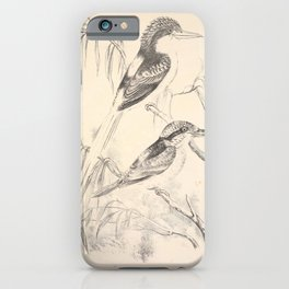 Vintage Print - Companion to Gould's Birds of Australia (1877) - White-Tailed Kingfisher iPhone Case