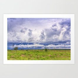 Coneflower Sky Art Print