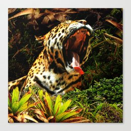 Jaguar Roar Yawn Canvas Print