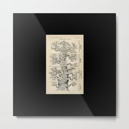 The Pedigree of Man Metal Print