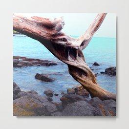 French Polynesian Tahiti Driftwood By Turquoise Ocean Beach Metal Print