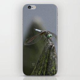 Launch Pad iPhone Skin