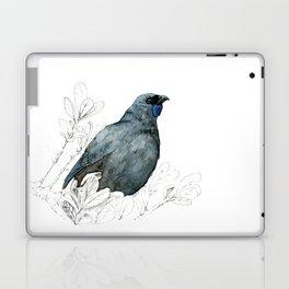 Kōkako, New Zealand native bird Laptop & iPad Skin