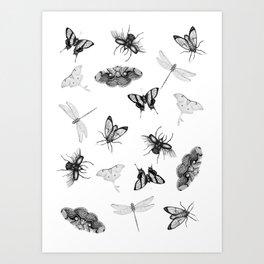 Entomologist Dreams Art Print