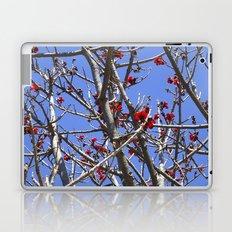 Blossoms On A Barren Tree Laptop & iPad Skin