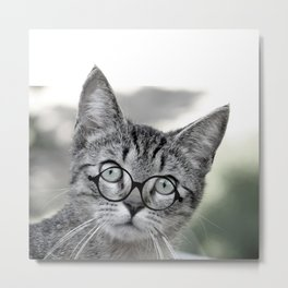 Old Lady Cat with Glasses Metal Print
