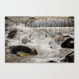 Stream in slow-motion Canvas Print