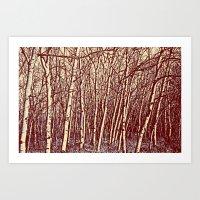 birch Art Prints featuring Birch by Indigo Rayz