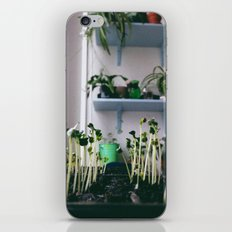 sprout iPhone & iPod Skin