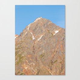The Iron Giant Canvas Print