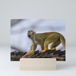 Monkey on the Roof Mini Art Print
