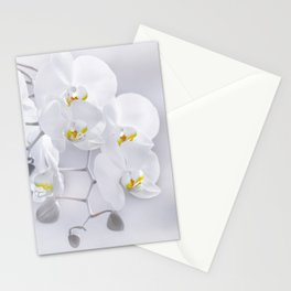 Orchid white macro 029 Stationery Cards