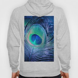 Peacock Feather Blush Hoody