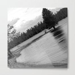 Curvature Metal Print