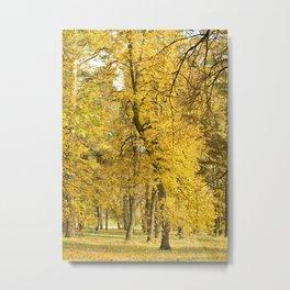 Art of Fall Metal Print