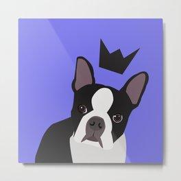 Royal Boston Terrier Metal Print