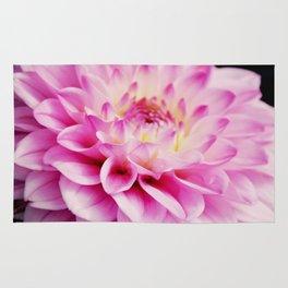 Close up pink dahlia Rug