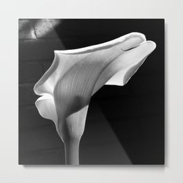 sensual lily on brick (square) Metal Print