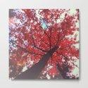 Autumn Red 2 by joystclaire