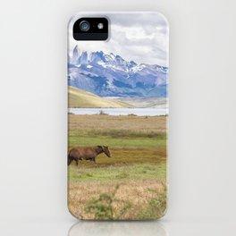 Torres del Paine - Wild Horses iPhone Case